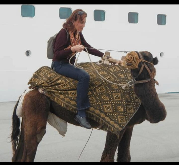 Margo_Camel